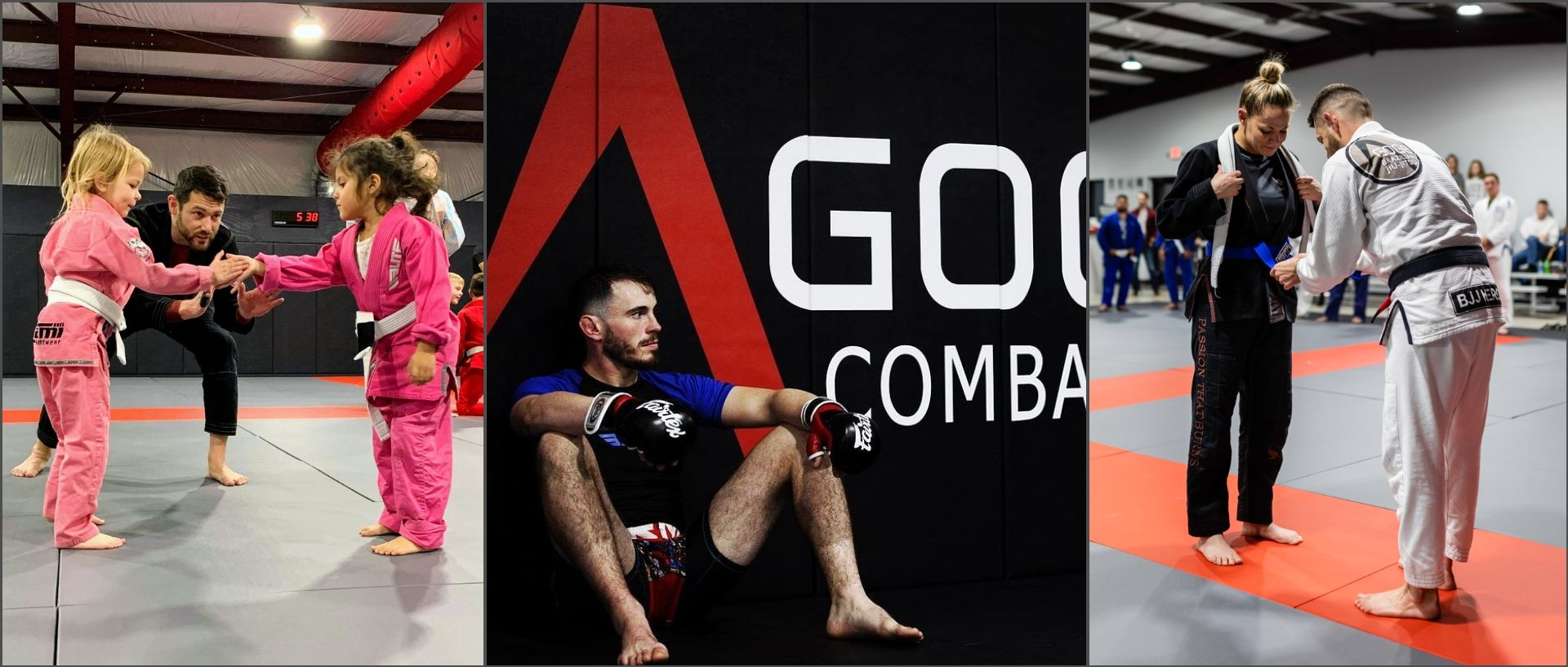 Agoge Combatives - Brazilian Jiu-Jitsu & Chattanooga Krav Maga photo